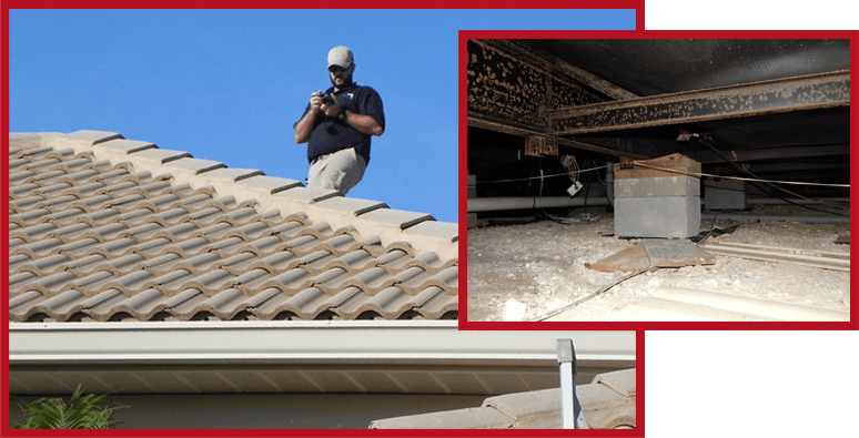 Roof and Foundation Inspection