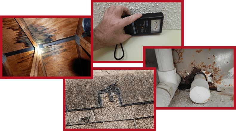 Problems found by Home Inspector